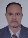 Essam A. El-Moselhy