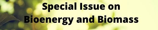special-issue-on-bioenergy-and-biomass-2195.jpg