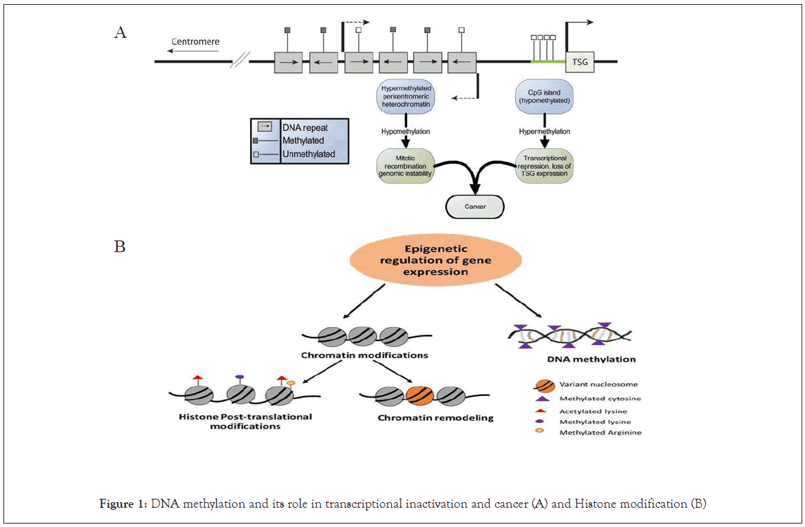 clinical-cellular-inactivation