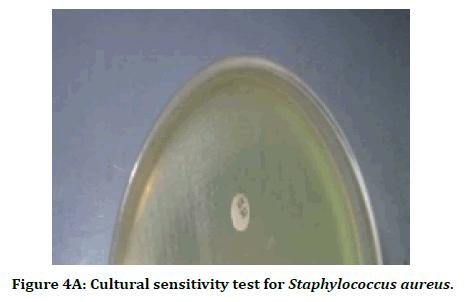 medical-dental-science-cultural-sensitivity