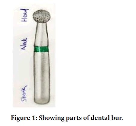 medical-dental-science-dental-bur