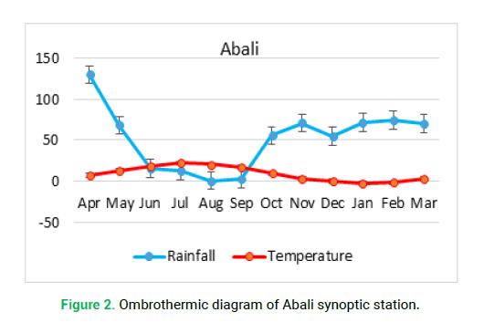 modern-phytomorphology-abali-synoptic