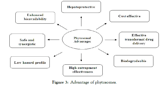 Developing-Drugs-Advantage-phytosomes