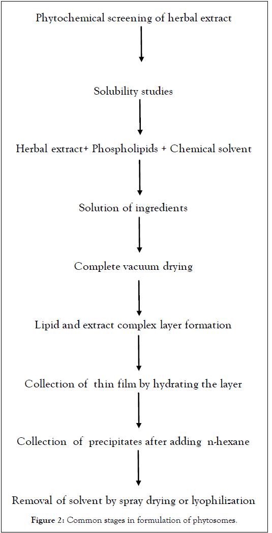 Developing-Drugs-formulation-phytosomes