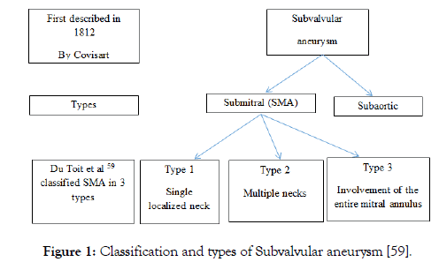 angiolog-subvalvular-aneurysm