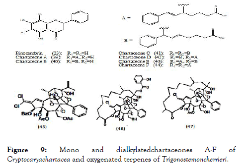 antivirals-antiretrovirals-Mono