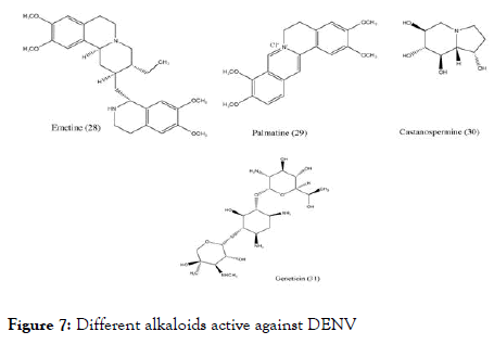 antivirals-antiretrovirals-alkaloids