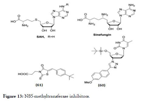 antivirals-antiretrovirals-methyltransferase