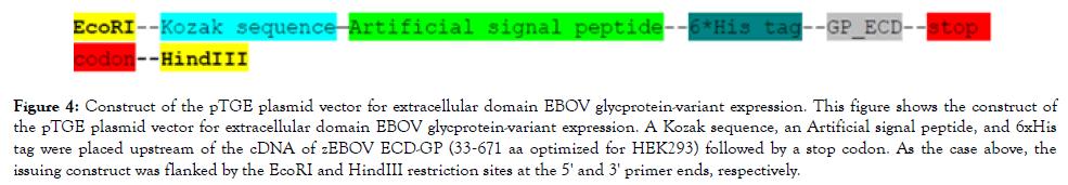 antivirals-antiretrovirals-signal-peptide