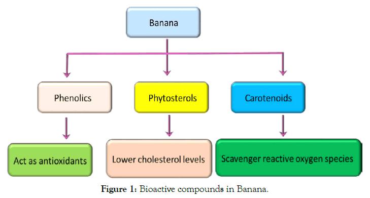 biochemistry-and-analytical-biochemistry-bioactive-banana