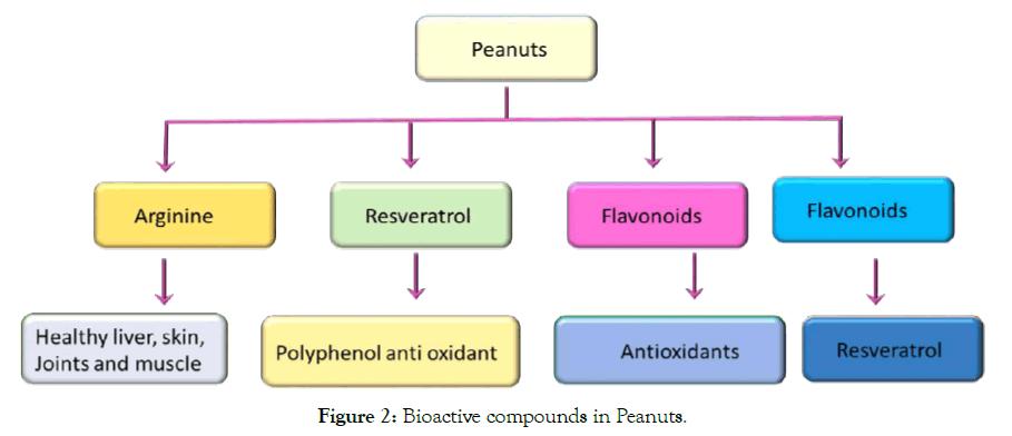 biochemistry-and-analytical-biochemistry-bioactive-peanuts