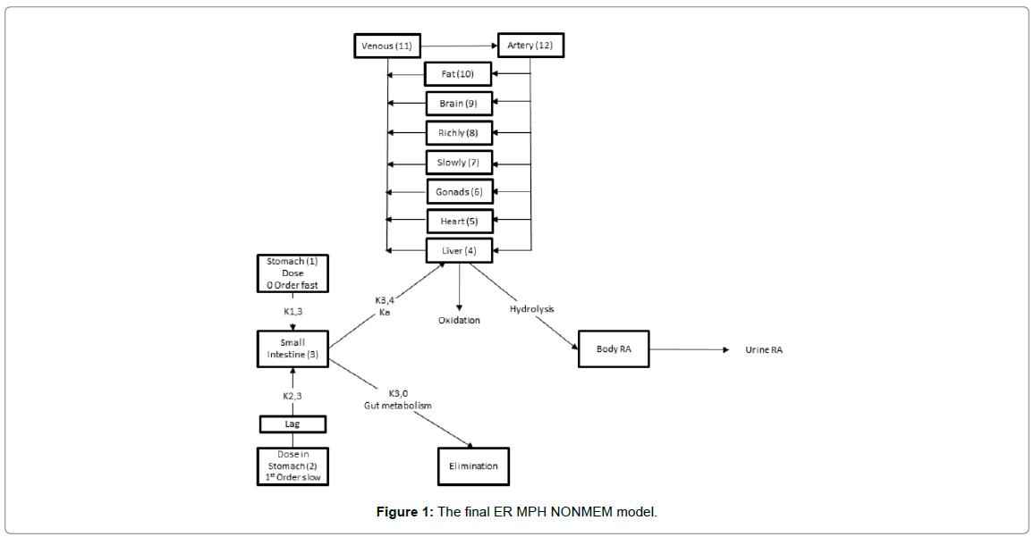 bioequivalence-bioavailability-NONMEM-model
