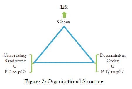 biology-medicine-organizational-structure
