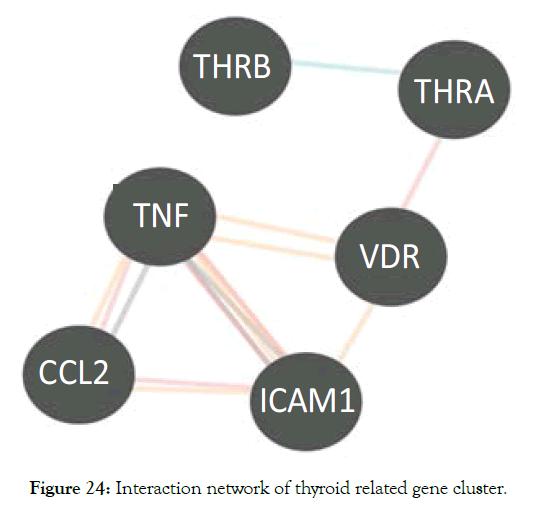 biology-medicine-thyroid-gene-cluster