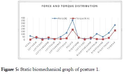 ergonomics-cluster-biomechanical-graph