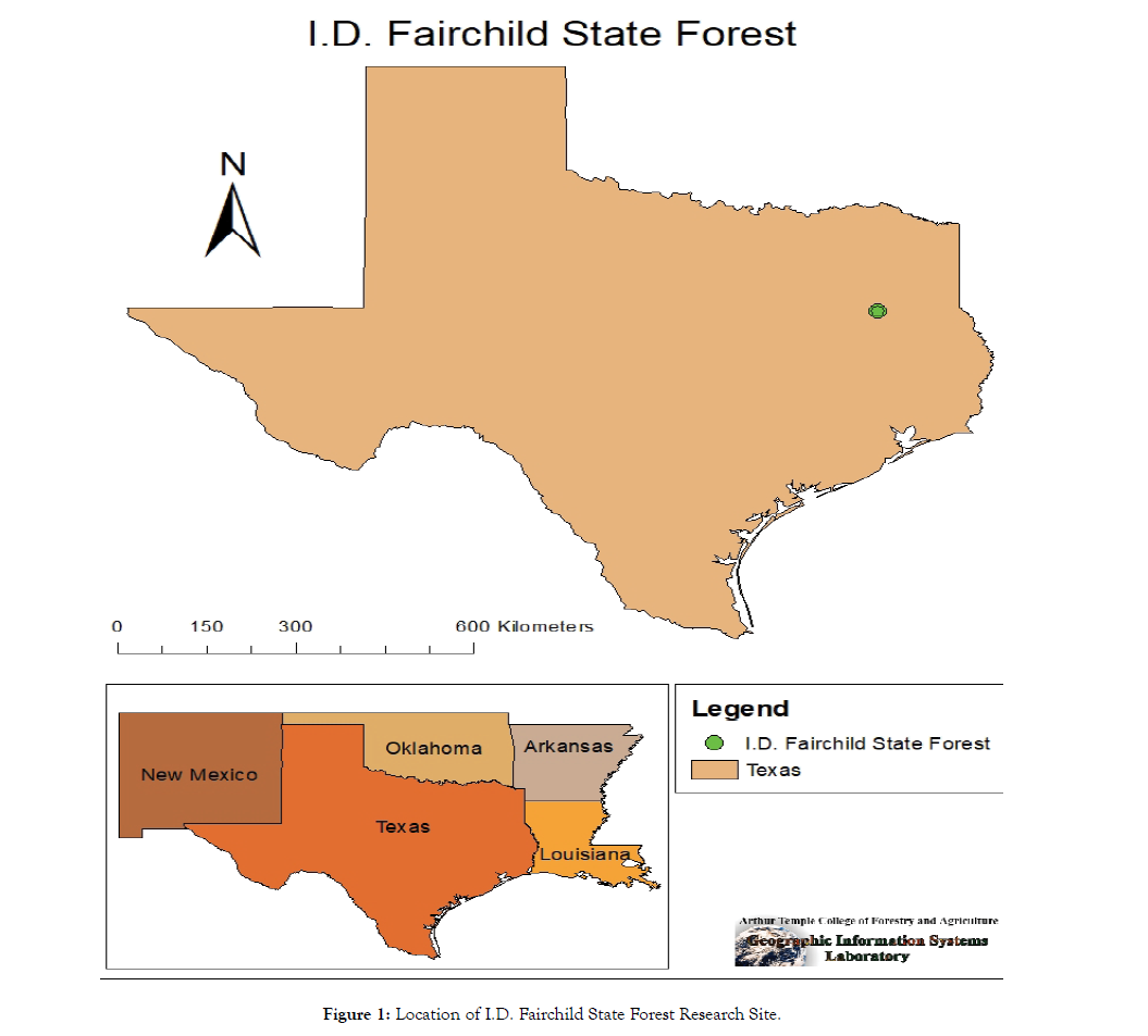 forest-research-fairchild-state