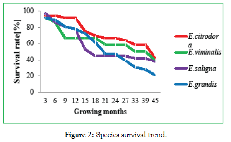 forest-research-open-access-trend