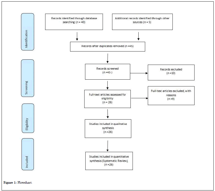 immunome-research-Flowchart
