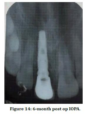 medical-dental-science-iopa