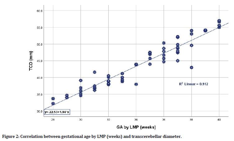 medical-dental-science-transcerebellar-diameter