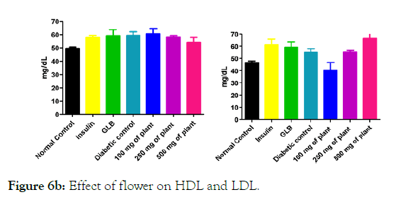 medicinal-aromatic-plants-LDL