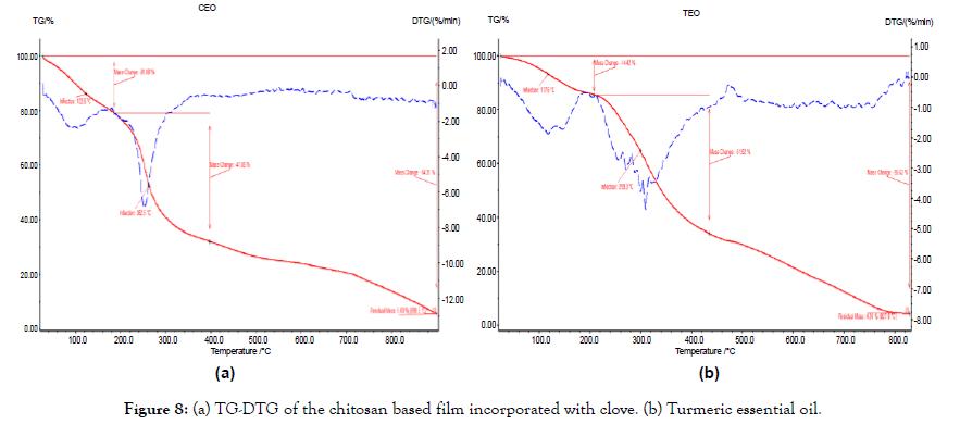 nanomedicine-nanotechnology-chitosan-based