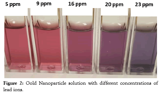 nanomedicine-nanotechnology-concentrations