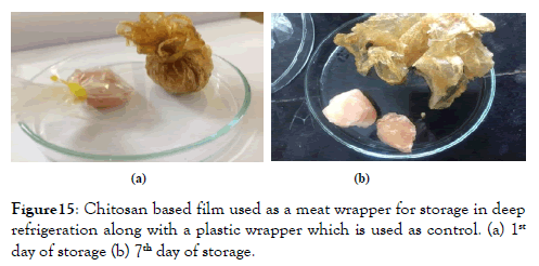 nanomedicine-nanotechnology-meat-wrapper