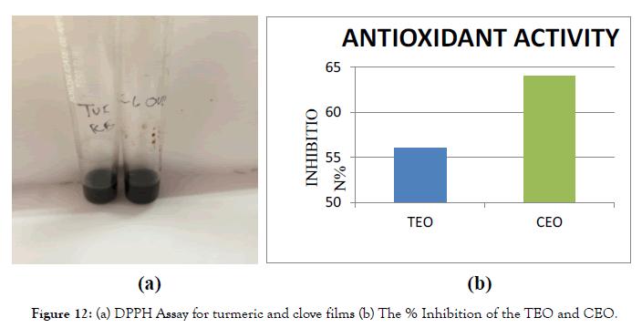 nanomedicine-nanotechnology-turmeric