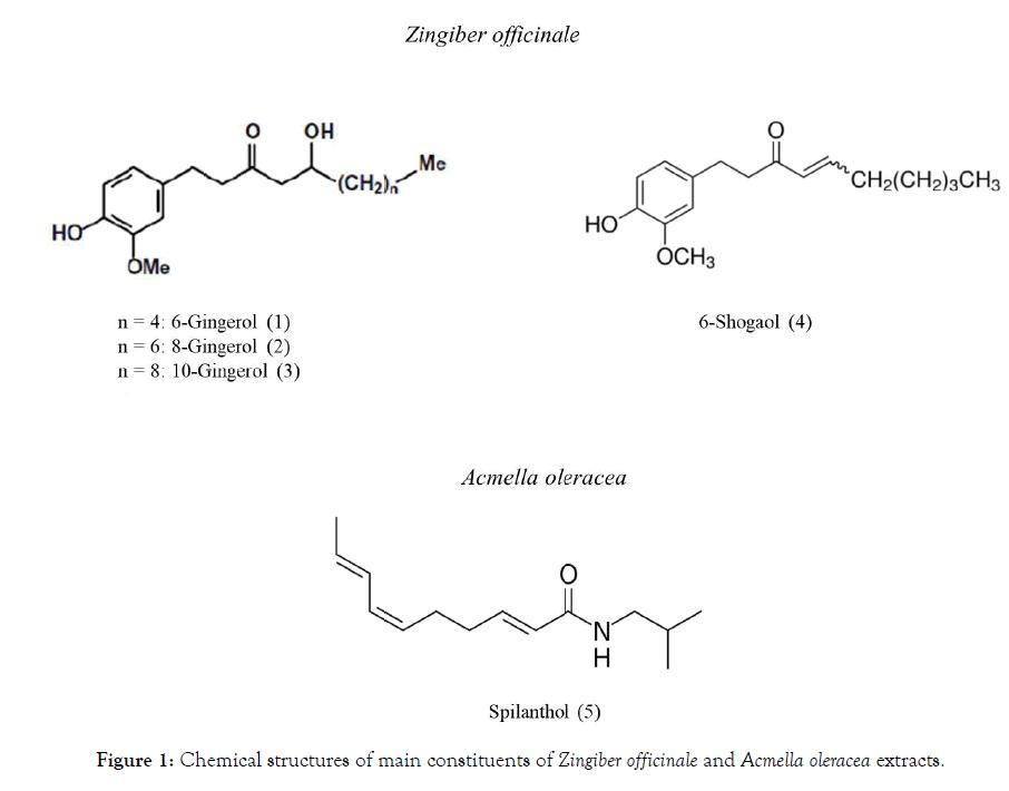 nutrition-food-sciences-acmella-oleracea-extracts