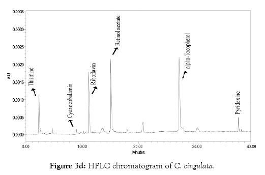 oceanography-marine-research-hplc-chromatogram