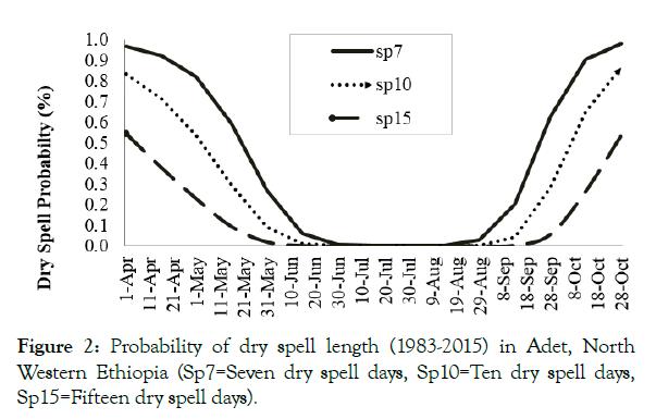 petroleum-environmental-biotechnology-dry-spell