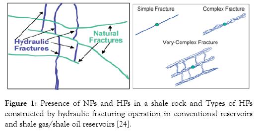 petroleum-environmental-biotechnology-hydraulic