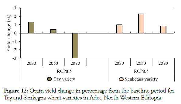 petroleum-environmental-biotechnology-wheat-varieties