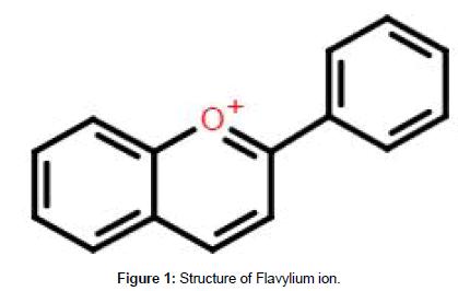 plant-biochemistry-physiology-Flavylium-ion