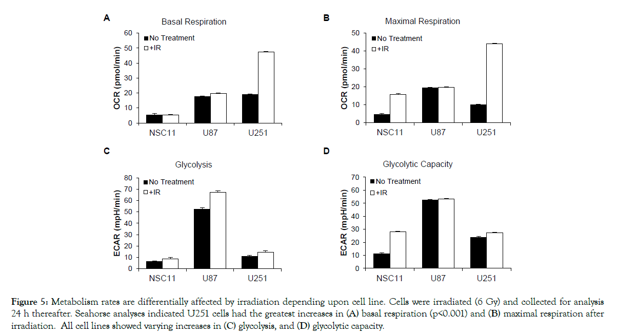 proteomics-bioinformatics-Metabolism-rates