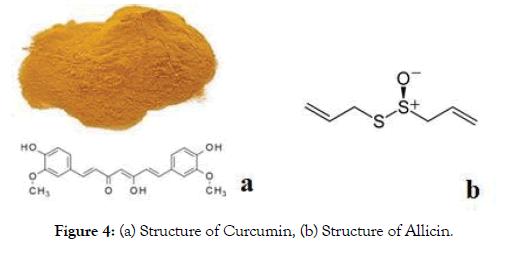 proteomics-bioinformatics-curcumin