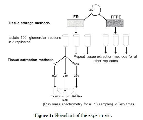 proteomics-bioinformatics-experiment