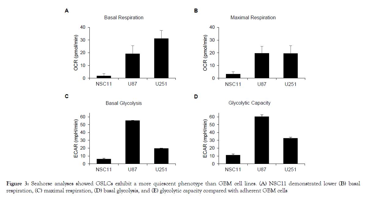 proteomics-bioinformatics-quiescent-phenotype
