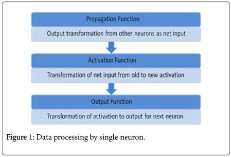 swarm-intelligence-evolutionary-computation-Data-processing