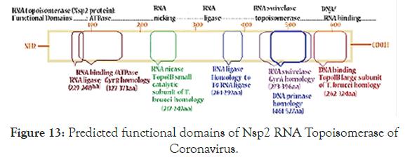 virology-mycology-domains