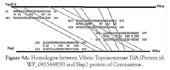 virology-mycology-protein